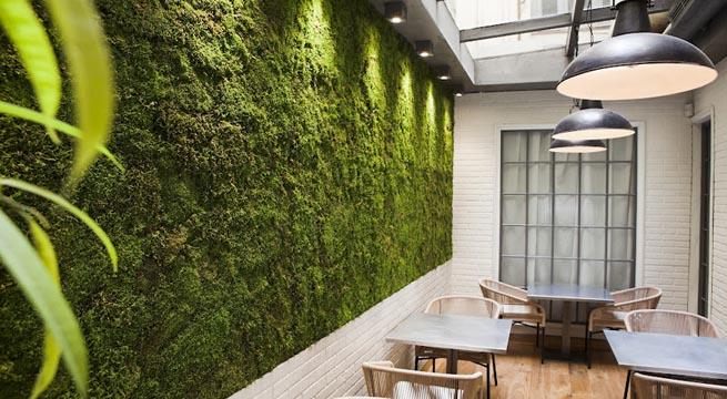 jardim vertical em muro:Decoracion De Pared Vertical