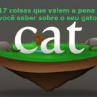 fatos-sobre-os-gatos