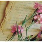 o-que-quer-dizer-sonhar-com-flores