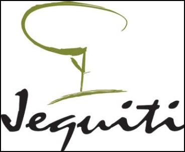 Site consultora jequiti